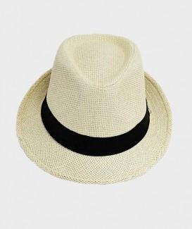 Chapeau style Panama...